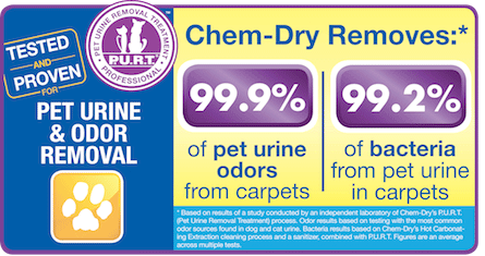 We can remove 99.9% of pet odors from rugs and carpets!