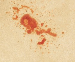 Fruit punch stain